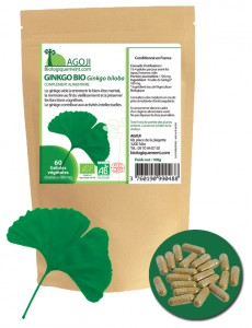 Achetez sur Biologiquement.com du Ginkgo Biloba biologique
