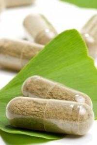 La poudre de feuille de Ginkgo bio, un antioxydant naturel puissant