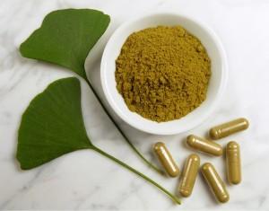 La poudre de feuille de Ginkgo biloba bio, antioxydant naturel puissant